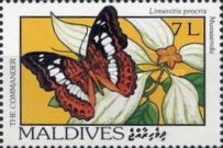 [Butterflies and Flowers, Typ BYO]