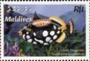 [Tropical Fish, type FCW]