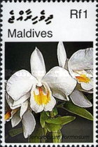 [Orchids, Typ FRQ]