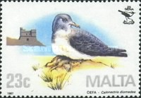 [Birds - Malta Ornithological Society, type TL]