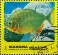 [Fish of the Mediterranean, type ADB]