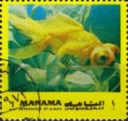 [Fish of the Mediterranean, type ADC]
