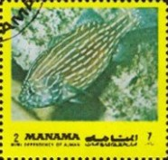 [Fish of the Mediterranean, type ADH]