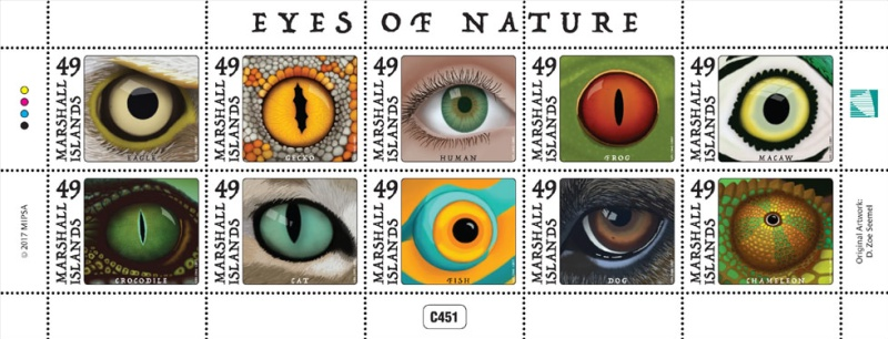 [Eyes of Nature, Typ ]