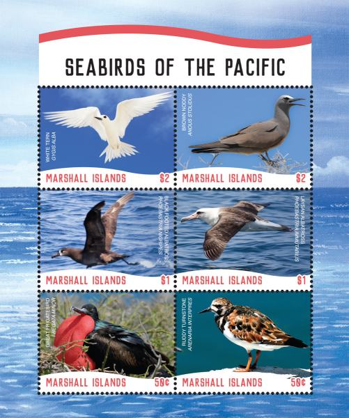 [Birds - Seabirds of the Pacific, Typ ]