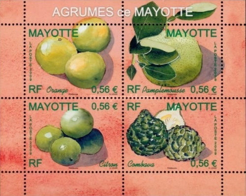 [Fruits of Mayotte, Typ ]