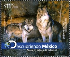 [Endangered Species - Mexican Wolf, type EEQ]