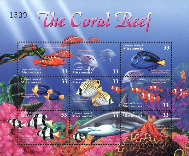 [Coral Reef Fish, type ]