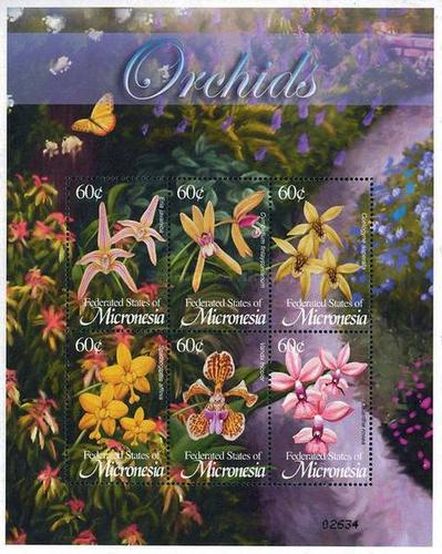 [Flora and Fauna - Orchids, type ]