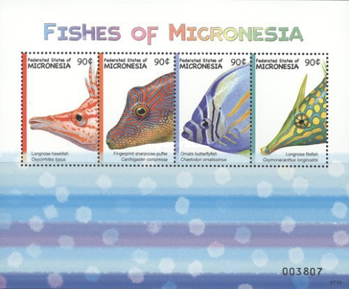 [Fish of Micronesia, type ]