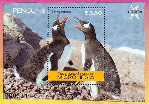 [Penguins, type ]