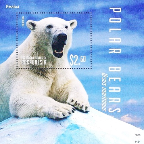 [Polar Bears, type ]