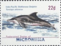 [Dolphins, type BWL]