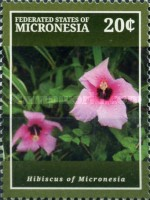 [Flora - Hibiscus of Micronesia, type DUP]