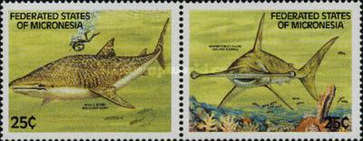 [Sharks, type DY]