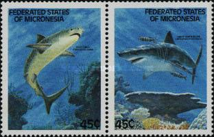 [Sharks, type EA]
