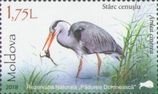 [Animals - Padurea Domneasca Nature Reserve, type AKU]