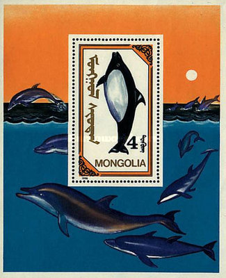 [Whales and Dolphins, type ]