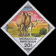 [Bactrian Camels, type AQL]