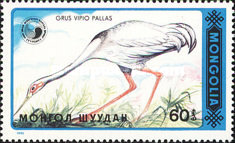 [Birds - White-naped Crane, type BWN]