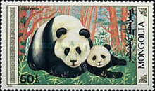 [The Giant Panda, type BXJ]