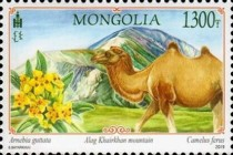 [Wild Landscapes of Mongolia, type ESO]