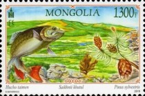 [Wild Landscapes of Mongolia, type ESS]