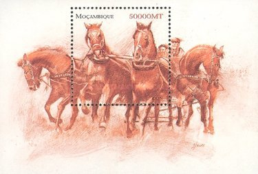 [Horses of the World, Typ ]
