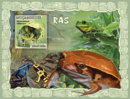 [Fauna - Frogs, Typ ]