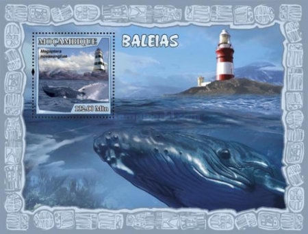 [Fauna - Whales & Lighthouses, type ]
