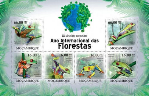 [Fauna - Tree-frogs, Typ ]
