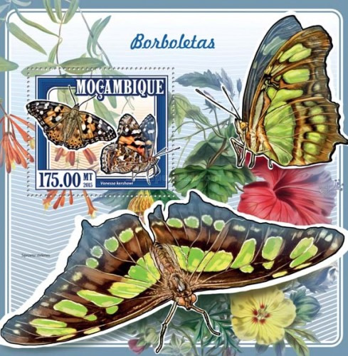 [Insects - Butterflies, Typ ]