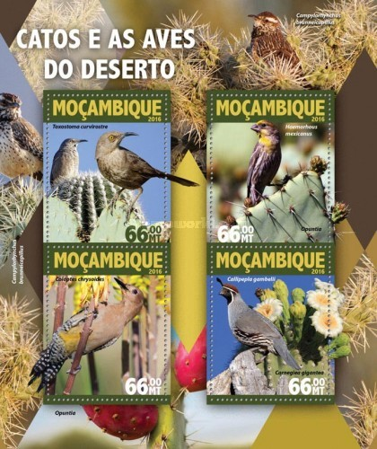 [Cactus and Birds of the Desert, Typ ]