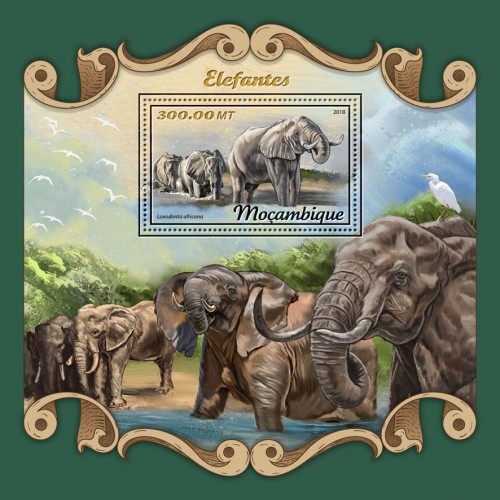 [Fauna - Elephants, Typ ]