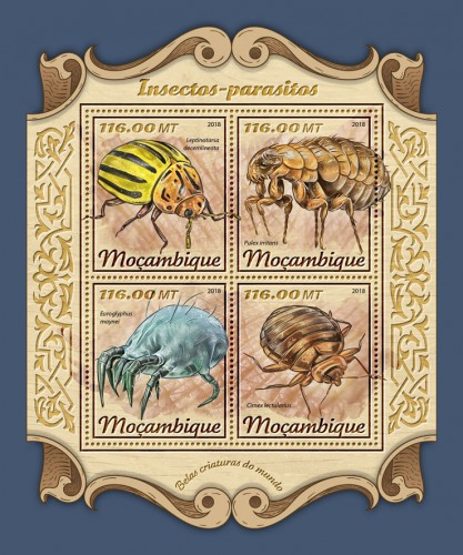 [Insects-Parasites, Typ ]