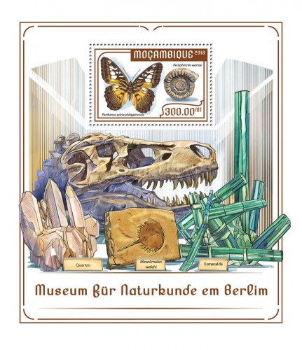 [The Natural History Museum in Berlin, Typ ]