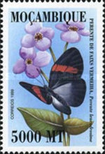 [Butterflies of the World, Typ AVK]