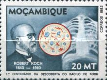 [The 100th Anniversary of Discovery of Tubercle Bacillus, type TH]