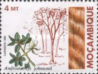 [Indigenous Trees, Typ WQ]