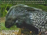 [Fauna of Artsakh, Typ BS]