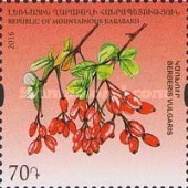 [Flora and Fauna of Artsakh, Typ CY]