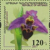 [Flowers - Orchid, Typ DQ]