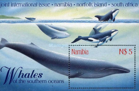 [Whales of the Southern Oceans, type ]