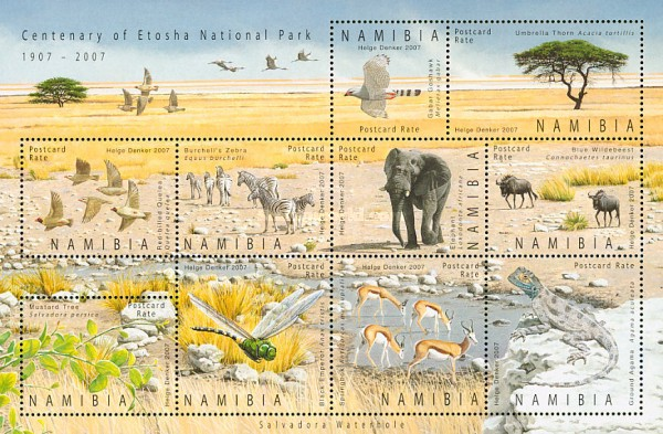 [The 100th Anniversary of Etosha National Park, Typ ]