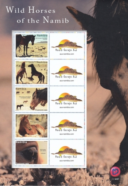 [Wild Horses of the Namib - Personalized Vignette, type ]