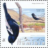 [Birds of Namibia, Typ AAM]