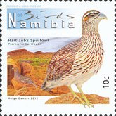[Birds of Namibia, Typ AAN]