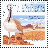 [Birds of Namibia, Typ AAQ]