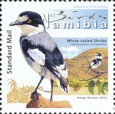 [Birds of Namibia, Typ AAR]