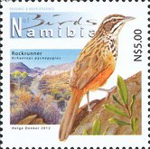 [Birds of Namibia, Typ AAS]